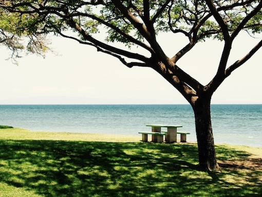 thumb_海の見える風景